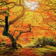7 Abstract Japanese Maple Tree Art Print