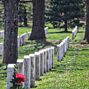 Arlington Cemetery Washington Dc Usa Art Print