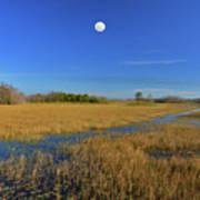 7- Everglades Moon Art Print
