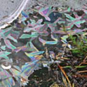 7. Ice Prismatics And Heather, Slaley Sand Quarry Art Print