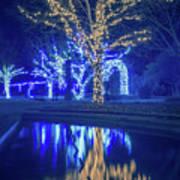 Lights, Christmas, Light, Christmas Tree, Green, Color, Red, Blu Art Print