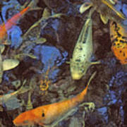 The Koi Pond Art Print