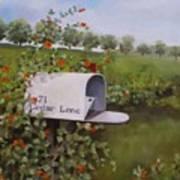 71 Cedar Lane Art Print
