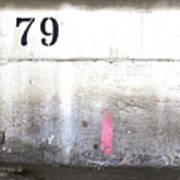 79 Art Print