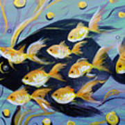 8 Gold Fish Art Print