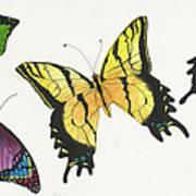 8 Butterflies Art Print