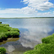 Cape Cod Salt Pond Art Print