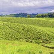 Rural Landscape In Tanzania Art Print