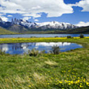 Springtime In Torres Del Paine Art Print
