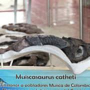 Centro De Investigaciones Paleontologicas Art Print