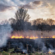 Fires Sunset Landscape Art Print