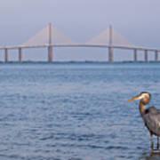 A Bird And A Bridge Art Print