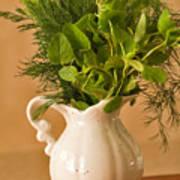 A Bouquet Of Fresh Herbs In A Tiny Jug Art Print