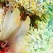 A Breath Of Spring Art Print