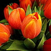A Bunch Of Tulips Art Print