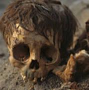 A Close View Of A Human Skull Art Print