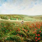 A Corner Of The Field In Bloom Art Print