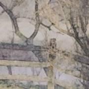 A Creek Runs Through It Art Print