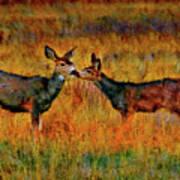 A Deer Kiss Art Print