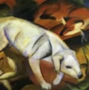 A Dog 1912 Art Print