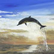 A Dolphin's Life Art Print