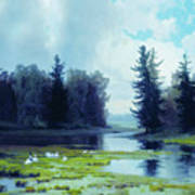 A Dreary Day At The Pond Art Print