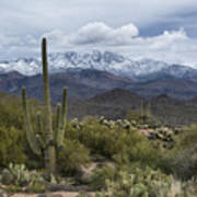 A Dusting Of Snow In The Sonoran Desert  Art Print