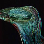 A Fish Called Poe 2 Art Print