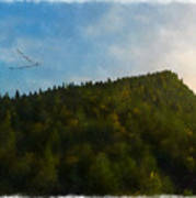 A Forested Dune... Art Print