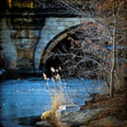 A Frozen Corner In Central Park Art Print by Chris Lord