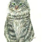 A Furry Cat  Art Print