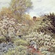 A Garden In Spring Art Print