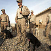 A Group Of Dog-handlers Conduct Print by Stocktrek Images