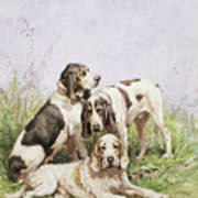A Group Of French Hounds Art Print