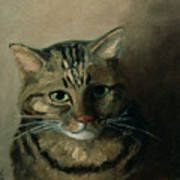 A Head Study Of A Tabby Cat Art Print
