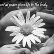 A Heart At Peace Art Print