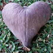 A Heart Never Dies Art Print