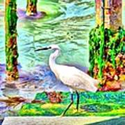 a heron is walking on a stair about the Grand Canal Art Print