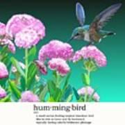 A Hummingbird Visits Art Print