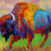 A Journey Still Unknown - Bison Art Print by Marion Rose