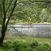 A Lake Near Glendalough Art Print