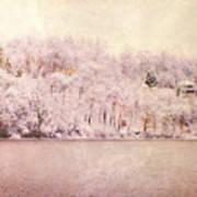 A Late Winter Xiv Art Print