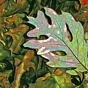 A Leaf On The Pile Art Print