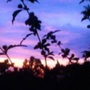 A Lighter Side Of A Sunset Art Print