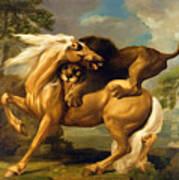 A Lion Attacking A Horse Art Print