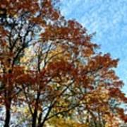 A Magnificent Fall Day Art Print