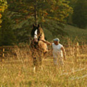 A Man And His Horse Art Print by Terry Kirkland Cook