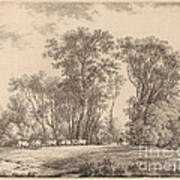 A Meadow With Cattle At The Edge Of A Wood Art Print