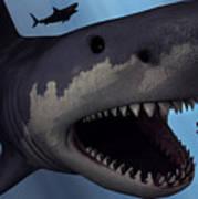 A Megalodon Shark From The Cenozoic Era Art Print