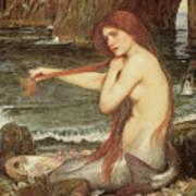A Mermaid Art Print